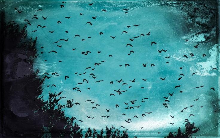flock banner