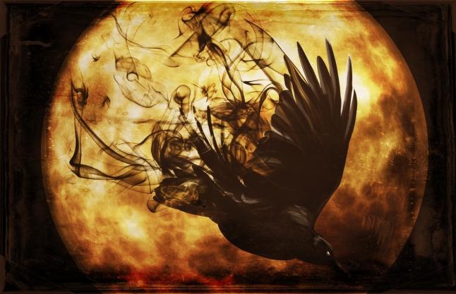 raven1 banner